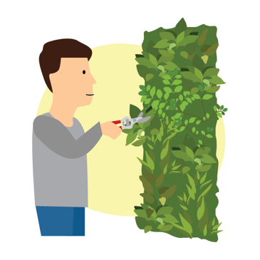 Install Guide   Evergreen Walls   Zeplin-1.png