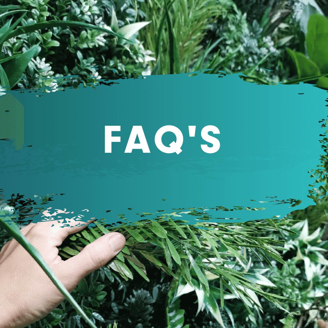 FAQ-btn