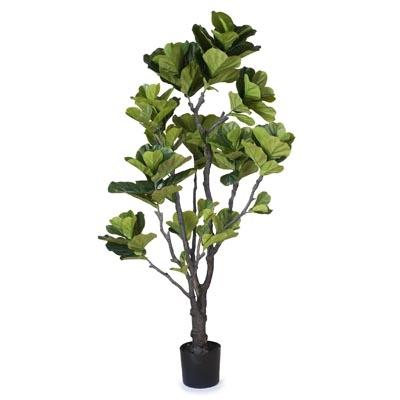 Fiddle_Leaf_Tree_Green_174cmh