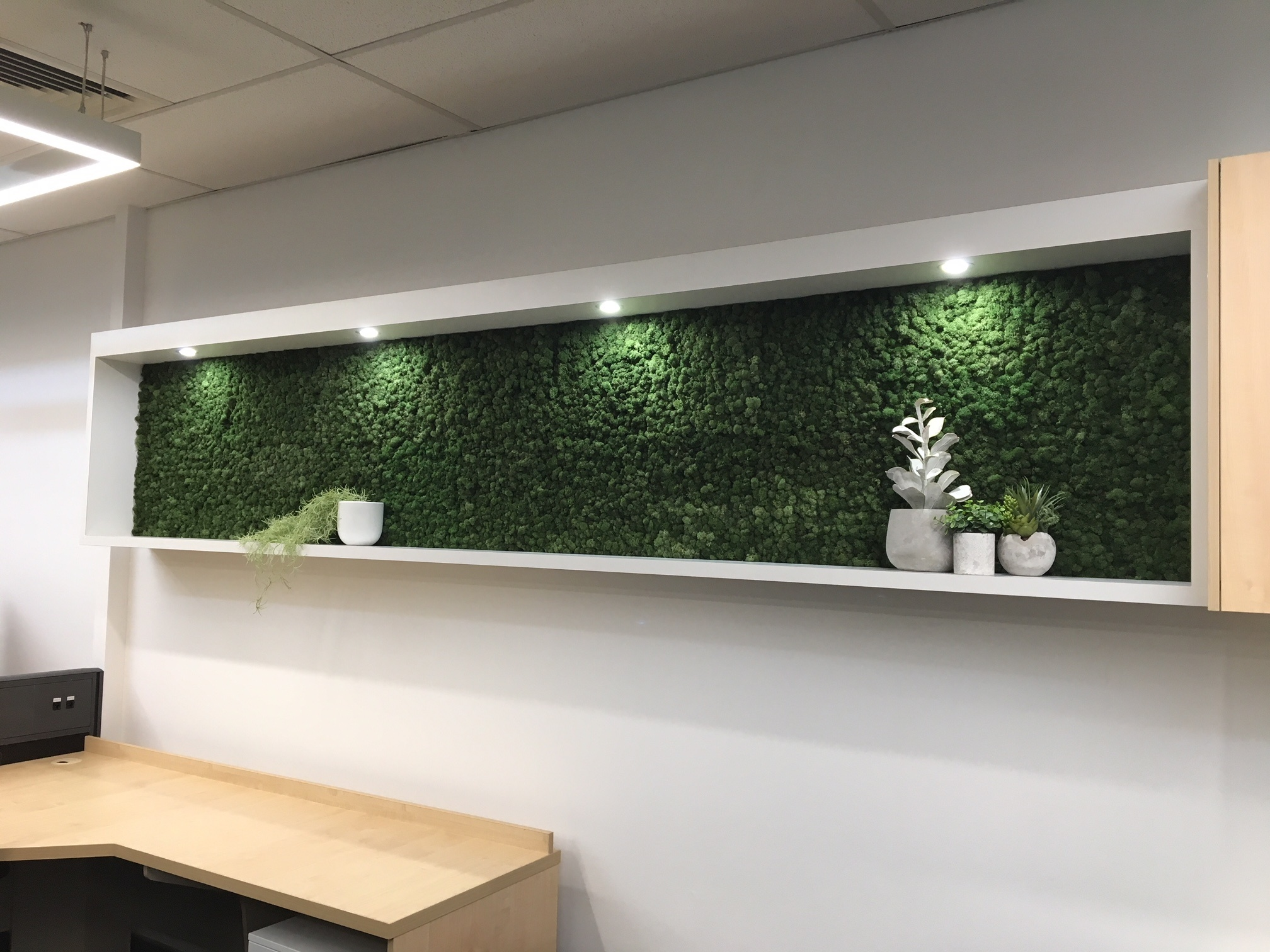 Office Fit Out Green Moss Panels