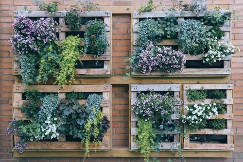 Evergreen Walls artificial green wall Sydney