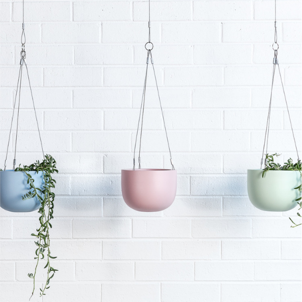 Maggie hanging planter bowls and foliage green pink blue-1