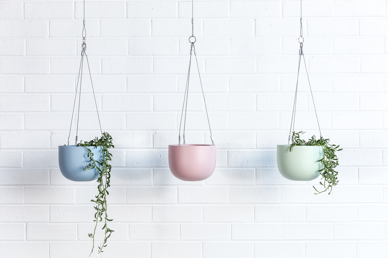 Maggie hanging planter bowls and foliage green pink blue
