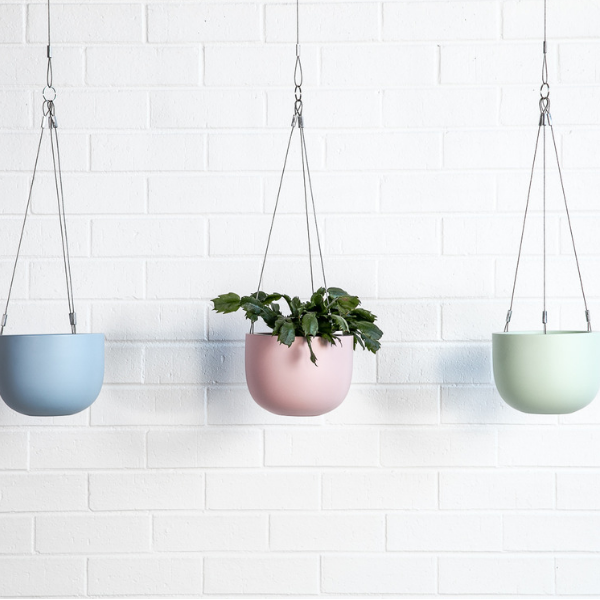Maggie hanging planter bowls and one foliage green pink blue