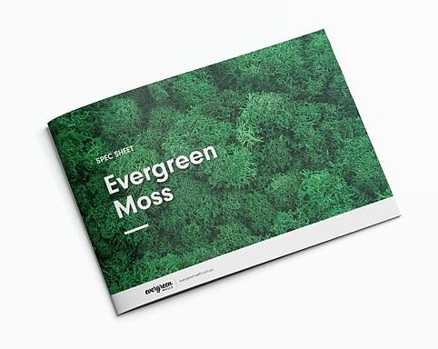 Evergreen Moss Vertical Garden