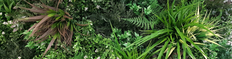 Evergreen-Banner-1.jpg