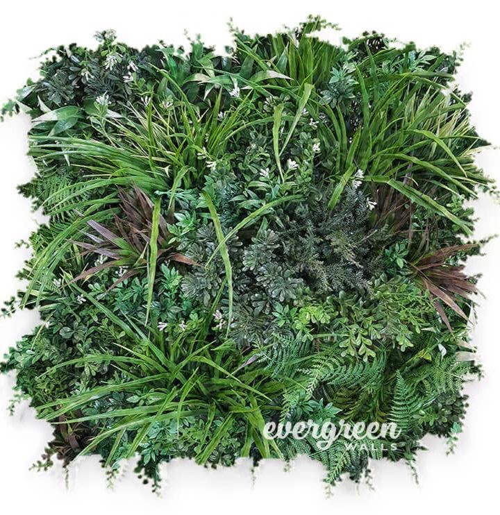 EvergreenPanel-web-1-720x742.jpg