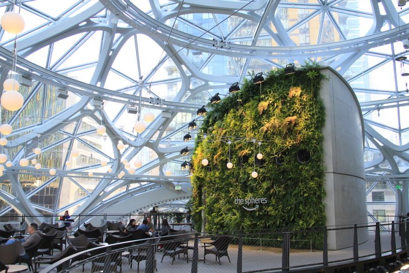 amazon spheres seattle hq green wall