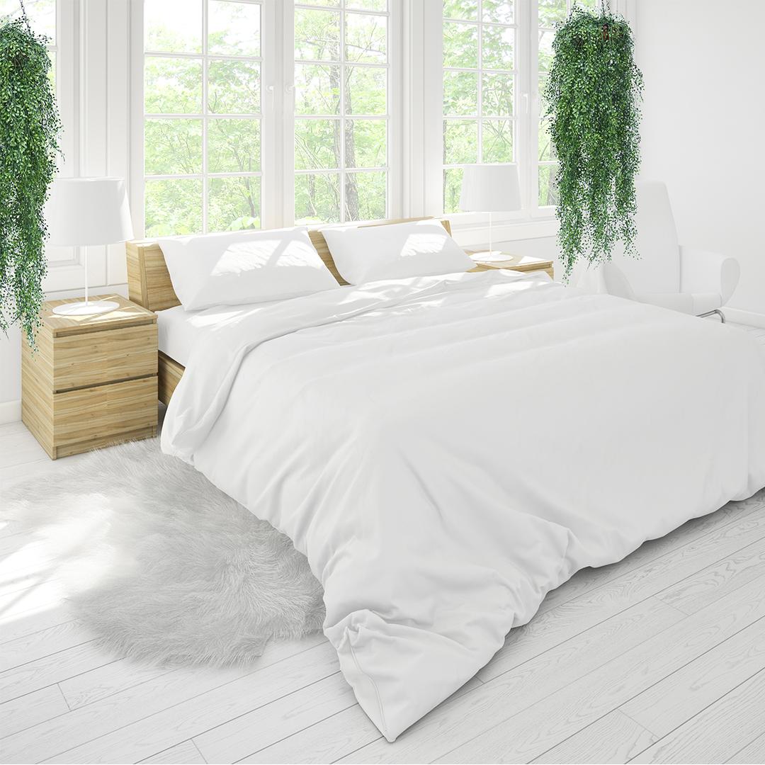 angel vine hanging basket bedroom