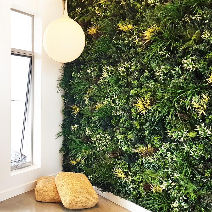 evergreenwalls premium