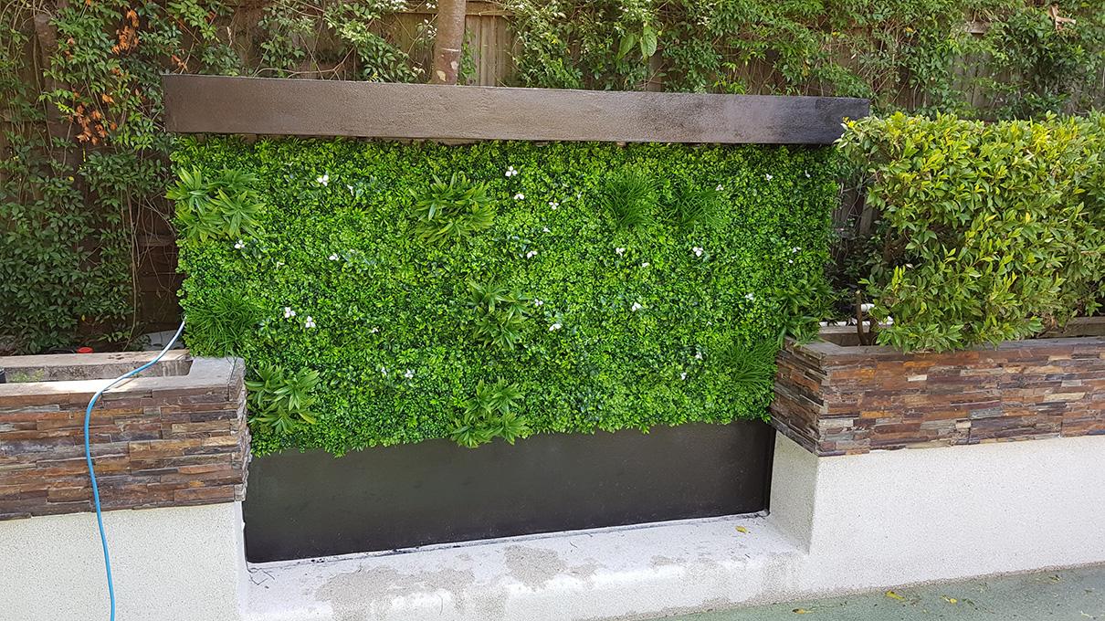 green wall in pool area-min
