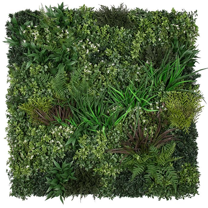 Evergreen Premium