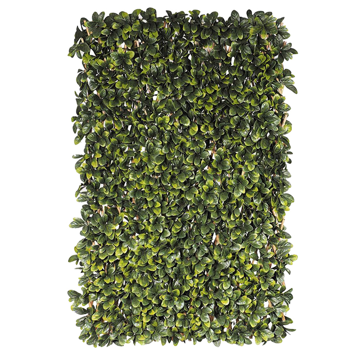Trellis green
