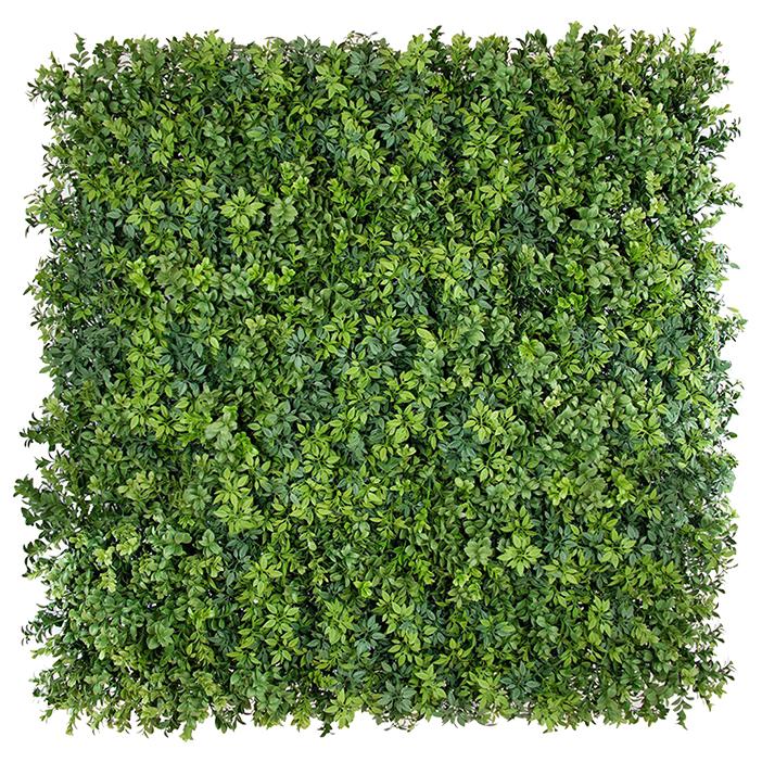 premium hedge